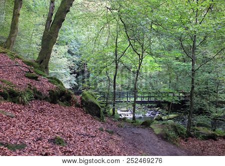 Landscape With A Pathway In A Steep Woodland Valley Leading To A Wooden Footbridge Crossing A River