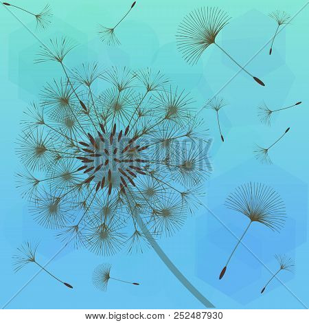 dandelion design vector photo free trial bigstock