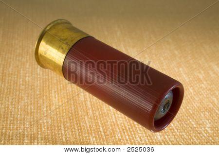 12 Gauge Shotgun Slug