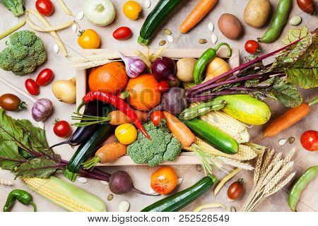 Autumn Harvest Farm Vegetables And Root Crops On Wooden Box Top View. Healthy And Organic Food.