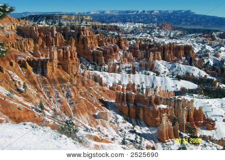 Briar Canyon