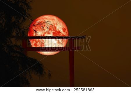 Blood Moon Back Silhouette Torii Wooden Japanese Pillar Stand On Tree Sunset Sky