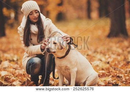 Headphones On Labrador. Young Woman With Dog. Autumn Park. Walking With Pets Outdoor. Pets And Peopl