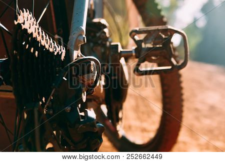 Rear Wheel Cassette And Chain In A Mountain Bike. Royalty High Quality Free Stock Image Of Bicycle P