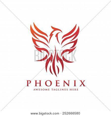 Luxury Phoenix Logo Concept, Best Phoenix Bird Logo Design, Phoenix Vector Logo,creative Logo Of Myt
