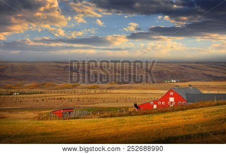 Barn in the middle of Prairies in Alberta