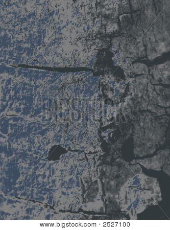 Bark Background Gray
