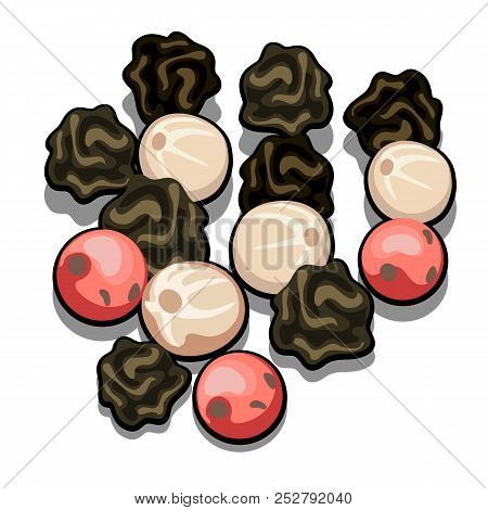 Colorful Peppercorns Red, Black And White. A Spicy Blend Of Three Types Of Pepper. Set Of Spices Iso