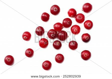 Cranberry Isolated On White. With Clipping Path. Full Depth Of Field. Top View