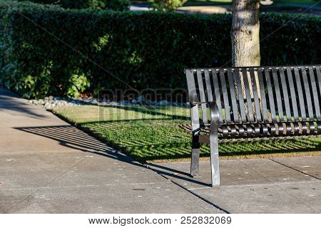 Park Bench Casting A Shadow On A Walkway In Front Of A Tree