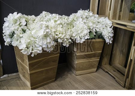 Decorative White Flower In Wooden Container, Stock Photo
