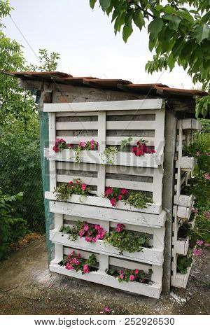 Interesting Rural Outside Toilet Decorated With Flowers