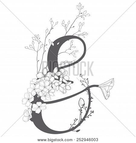 Vector Hand Drawn Floral Ampersand Monogram And Logo