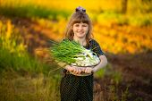 Happy little girl help parents tear onions in garden. Sweet little girl with bountiful harvest poster