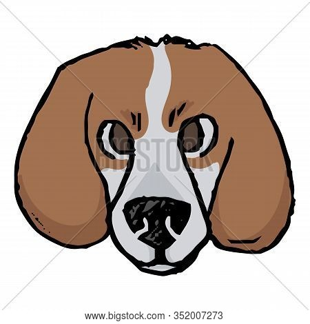 Cute Cartoon Foxhound Hunting Dog Face Vector Clipart. Pedigree Kennel Doggie Breed For Dog Lovers.