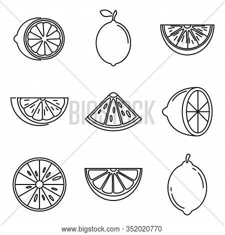 Tropical Lime Icons Set. Outline Set Of Tropical Lime Vector Icons For Web Design Isolated On White