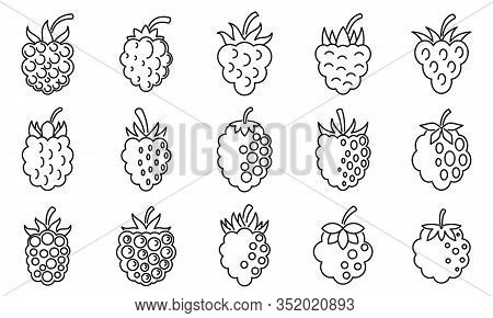 Raw Blackberry Icons Set. Outline Set Of Raw Blackberry Vector Icons For Web Design Isolated On Whit