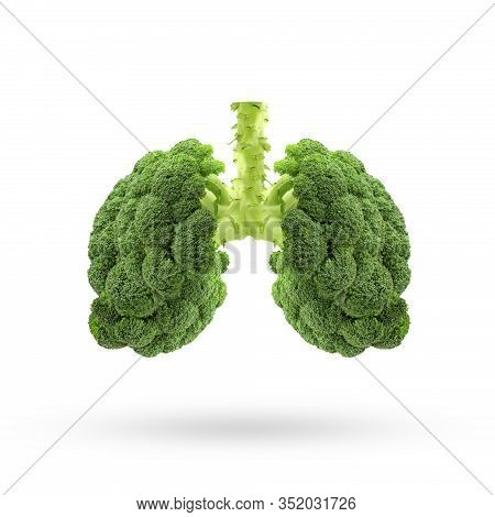 Conceptual Image Of Green Broccoli  Shaped Like Human Lungs, Green Broccoli Shaped In Human Lungs. C