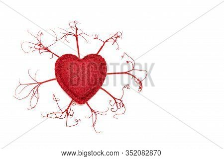 The Concept Of The Heart And Circulatory System, Veins And Arteries, Heart And Vascular Diseases, Ca