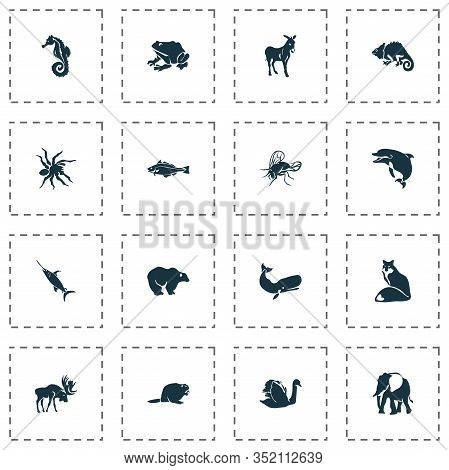 Animal Icons Set With Sea Horse, Swordfish, Cachalote And Other Mule Elements. Isolated Vector Illus