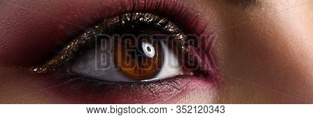 Close-up Of Lady Face With Amazing Bright Eye Makeup In Luxurious Scarlet Shades. Beautiful Glance W