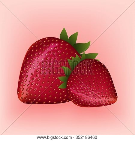 Two Red Strawberries On Pink Background. Berries For Natural Candy. Vector Illustration. Fresh Fruit