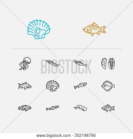 Seafood Icons Set. Carp Fish And Seafood Icons With Jellyfish, Grouper Fish And Salmon. Set Of Mollu