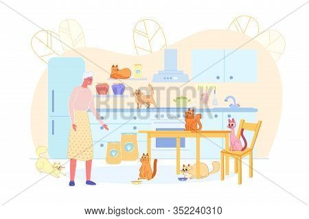 Old Woman Feeding Cats In Kitchen Flat Cartoon Vector Illustration. Senior Lady Spending Leisure Tim