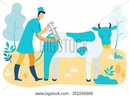 Man In Green Uniform. Veterinarian In Coat With Syringe In Hand Inject Cow. Vector Illustration. Far