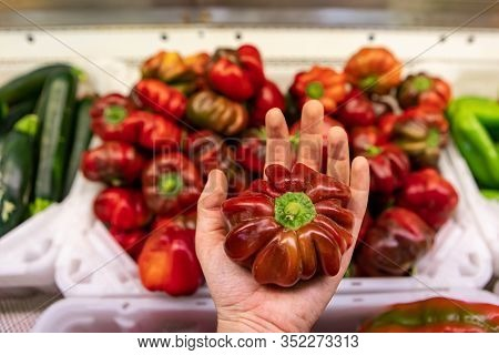 Close Up Of A Hand Holding A Bright Rd Crisp Pepper. Other Peppers And Vegetable In The Blurred Back
