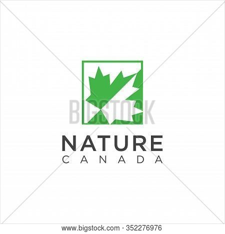 Maple Leaf Logo. Vector Leaves Of Maple Trees, A Symbol Of Canada Country And Nature. Vector Logo Te
