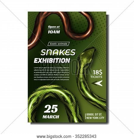Tropical Snakes Exhibition Advertise Banner Vector. Wild Poisonous Snakes With Bright Color. Green A