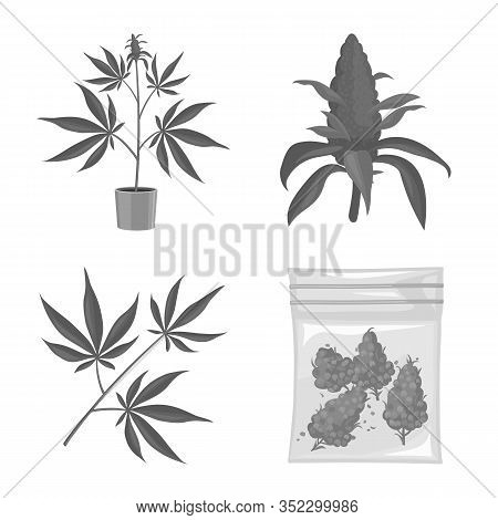Vector Design Of Narcotic And Drug Icon. Collection Of Narcotic And Addiction Stock Symbol For Web.