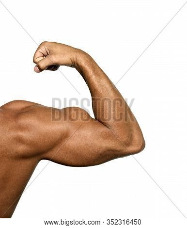 Close Up Of Man's Arm Showing Biceps