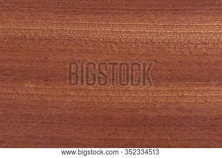 Natural Red Teak Wood Texture. Teak Background.
