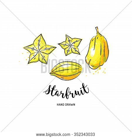 Starfruit Graphic Drawing Exotic Fruit. Watercolor Carambola On A White Background. Vector Starfruit