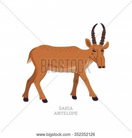 Rare Animals Collection. Saiga Antelope. Saiga Tatarica, Endangered Antelope. Flat Style Vector Illu