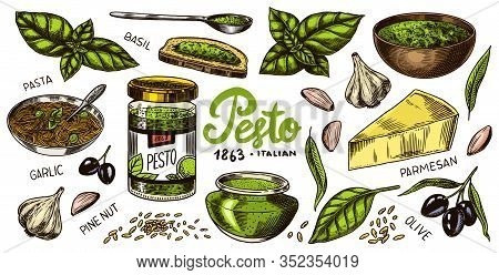 Pesto Sauce Set. Basil Leaves, Garlic, Pine Nuts, Hard Parmesan Cheese, Olive Oil, Pesto Alla Genove