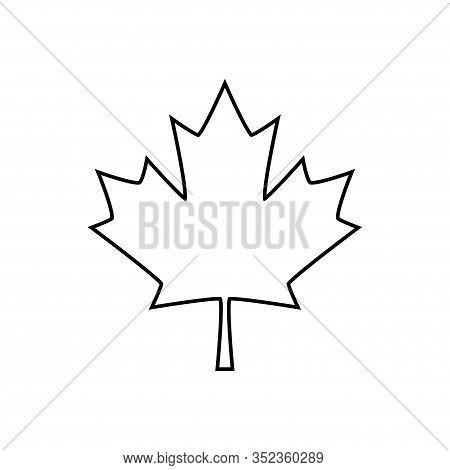 Maple Leaf Icon Isolated On White Background. Vector Illustration
