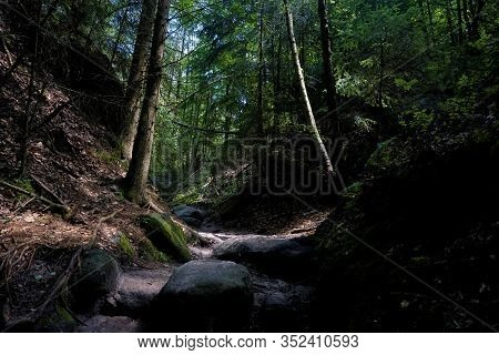 Tranquil Part Of The Wilde Hoelle Trail In Saxon Switzerland, Germany