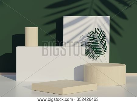 3d Abstract Minimal Geometric. Fashion Show Stage Podium With Tropical Palm Leaves Shadows And Monst
