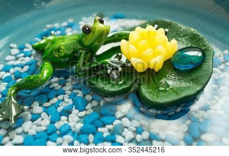 Beautiful Green Frog Sitting On A Water Lily
