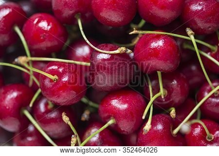 Extreme Closeup Of Red And Fresh Cherries