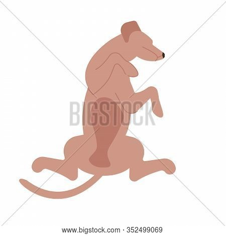 Cute Dog Character Is Lying On Back And Sound Asleep, Cute Funny Puppy Portrait. Flat Art Vector Ill