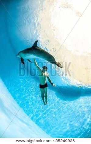 Man en Dolphin