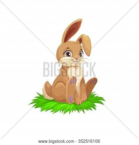 Easter Bunny Or Rabbit On Grass, Religion Holiday Egg Hunt Vector Theme. Brown Bunny With Cute Ears