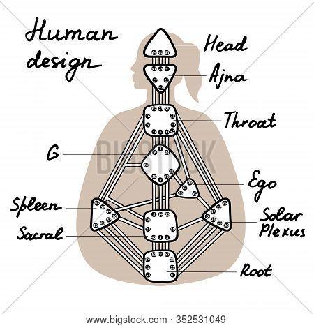Head, Ajna, Throat, Ego, Solar Plexus, Sacral Root Spleen G Center