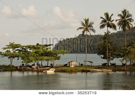 Sunset Sea View With Palm Trees Sao Tome