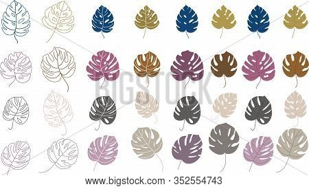 Set Of Color Monstera Leaves. Silhouettes Of Leaf Of A Plant. Imprint For Creating Tropical Patterns
