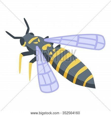 Wasp Agression Icon. Isometric Of Wasp Agression Vector Icon For Web Design Isolated On White Backgr